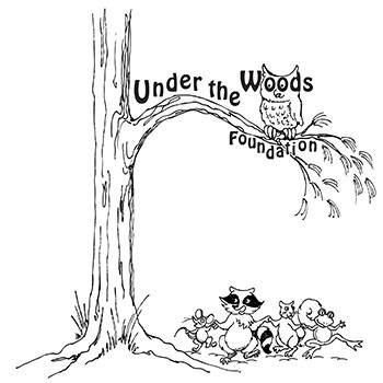 Under the Woods Foundation