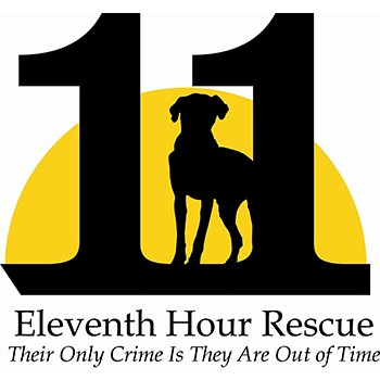 Eleventh Hour Rescue
