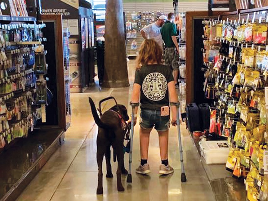 Paws Giving Independence Impact