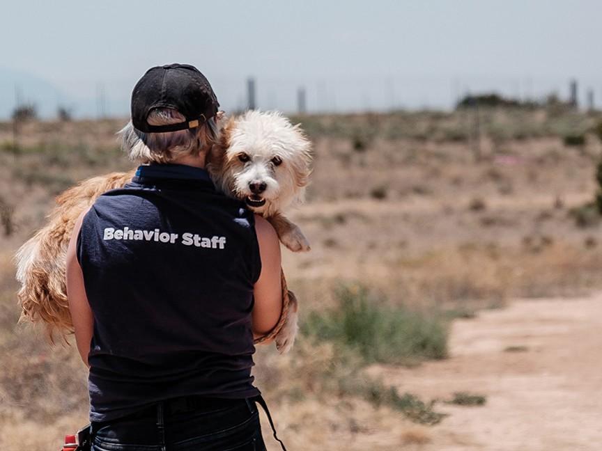 Santa Fe Animal Shelter and Humane Society Impact