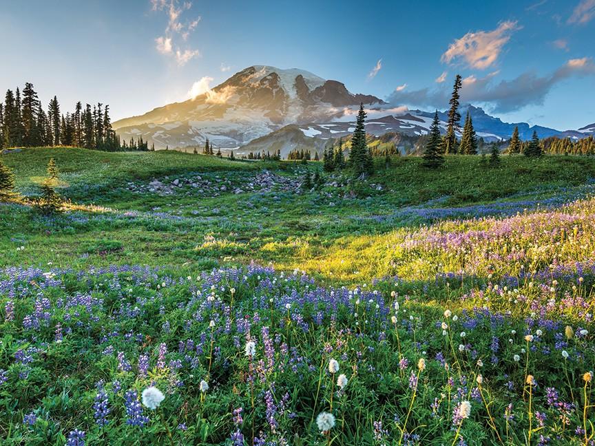 Washington's National Park Fund Impact