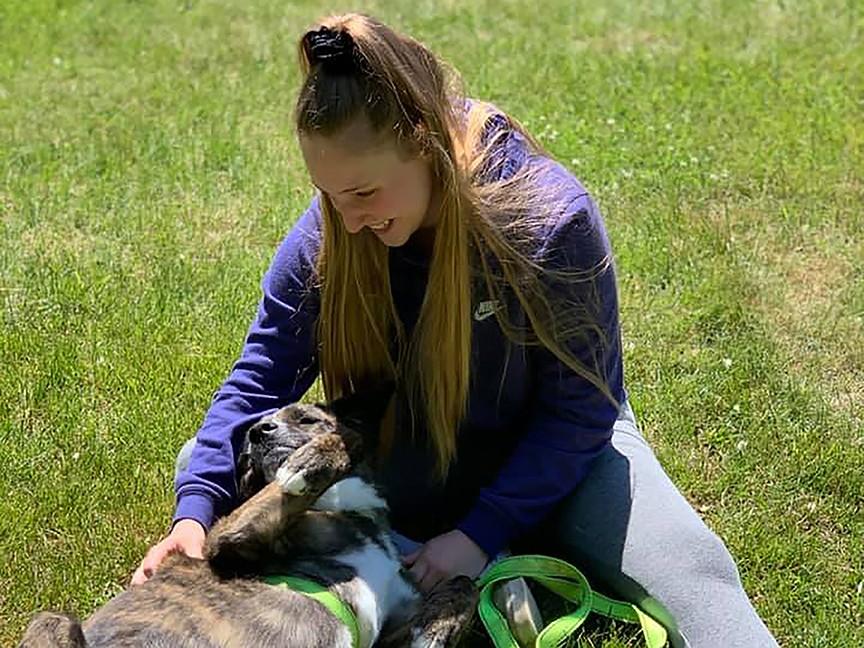 Kennebec Valley Humane Society (KVHS) Impact