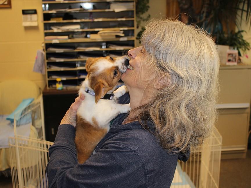 Berkshire Humane Society Impact