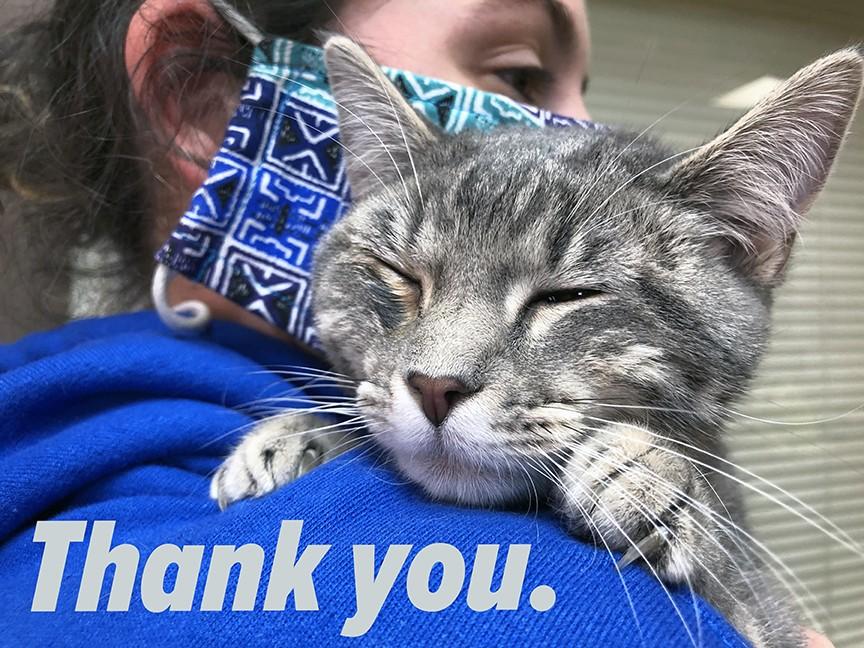 Cedar Bend Humane Society Impact