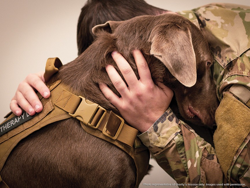 Healing Paws for Warriors Impact