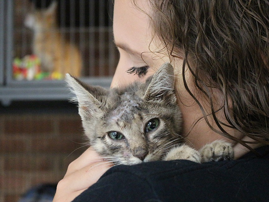 Humane Society of Washington County Impact