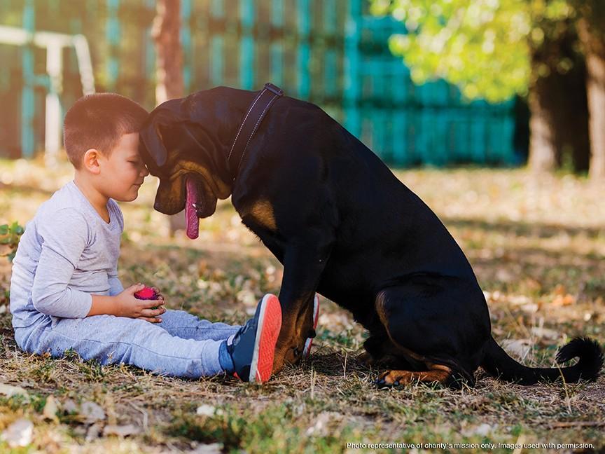 Champaign County Humane Society Impact